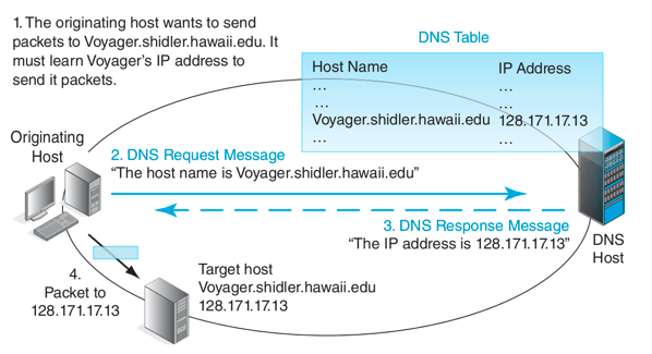 An infographic explaining the DNS/IP address exchange occurring after a user initiates a request for a page on a public website.