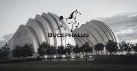 Bucephalus Holdings